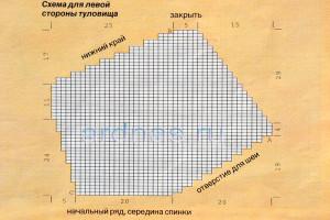 petushok1
