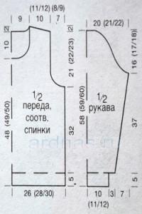 pul-s-ptisami1