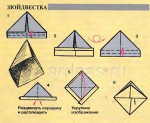 zyuidvestka1