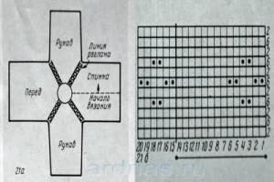 blyzon-s-rykavamu-reglan1